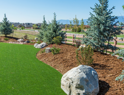 Types of Artificial Grass You Can Select From